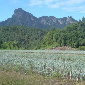 群馬県妙義山、ドタバタギュー