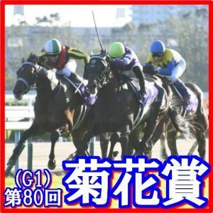 【菊花賞(G1)】(2019日刊馬番コンピ活用術予想篇)