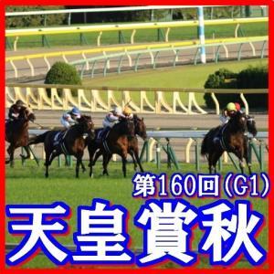 【天皇賞(秋)(G1)】(2019日刊馬番コンピ活用術予想篇)