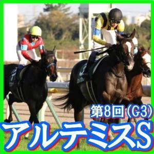 【アルテミスS(G3)】(2019日刊馬番コンピ活用術予想篇)