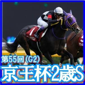 【京王杯2歳S(G2)】(2019日刊馬番コンピ活用術予想篇)