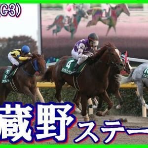【武蔵野ステークス(G3)】(2019血統データ活用術予想篇)