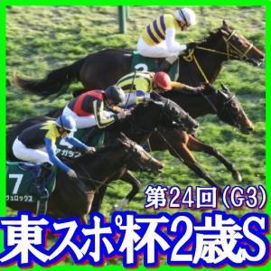 【東京スポーツ杯2歳S(G3)】(2019日刊馬番コンピ活用術予想篇)