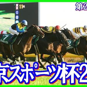 【東京スポーツ杯2歳S(G3)】(2019血統データ活用術予想篇)