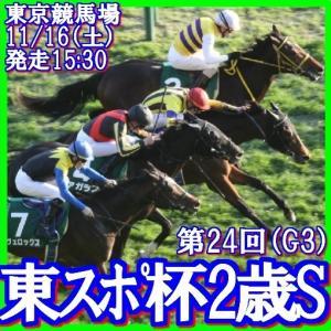 【東京スポーツ杯2歳S(G3)】(2019インパクトデータ活用術予想篇)