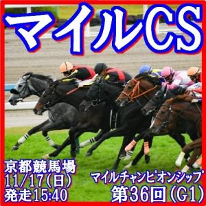 【マイルチャンピオンシップ(G1)】(2019インパクトデータ活用術予想篇)