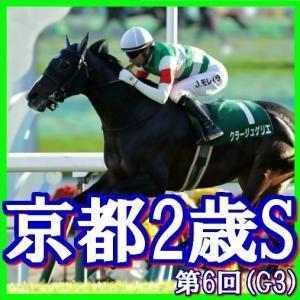 【ラジオNIKKEI杯京都2歳S(G3)】(2019日刊馬番コンピ活用術予想篇)