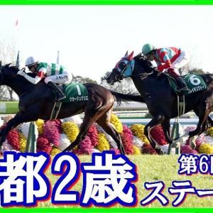 【ラジオNIKKEI杯京都2歳S(G3)】(2019血統データ活用術予想篇)
