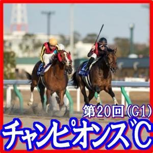 【チャンピオンズカップ(G1)】(2019日刊馬番コンピ活用術予想篇)