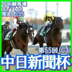 【中日新聞杯(G3)】(2019ハイブリッド指数活用術予想篇)
