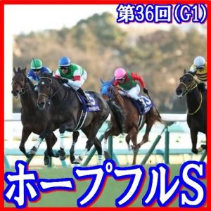 【ホープフルステークス(G1)】(2019日刊馬番コンピ指数活用術予想篇)