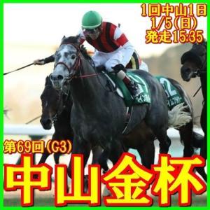【中山金杯(G3)】(2020ラップ分析篇)