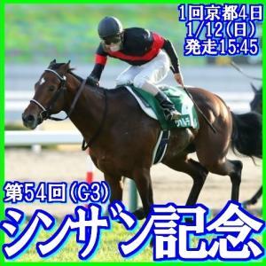 【シンザン記念(G3)】(2020総合分析予想篇)