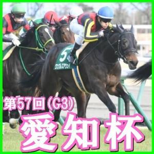 【愛知杯(G3)】(2020馬番コンピ指数分析篇)