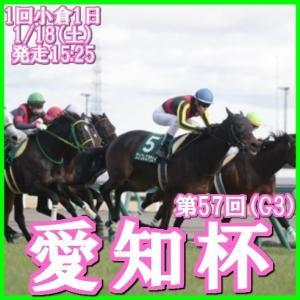 【愛知杯(G3)】(2020データ分析篇)