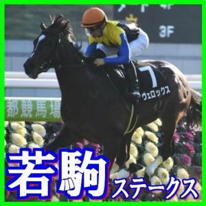【若駒ステークス(L)】(2020日刊馬番コンピ指数分析篇)