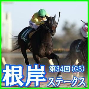 【根岸ステークス(G3)】(2020日刊馬番コンピ指数分析篇)
