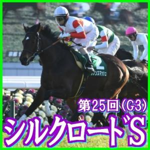 【シルクロードS(G3)】(2020ラップ分析篇)