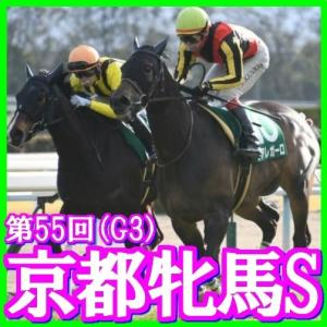 【京都牝馬S(G3)】(2020ラップ分析篇)