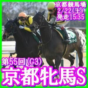 【京都牝馬S(G3)】(2020総合分析予想篇)