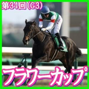 【フラワーカップ(G3)】(2020日刊馬番コンピ指数分析篇)