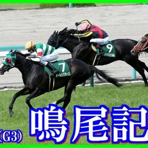 【鳴尾記念(G3)】(2020データ分析篇)