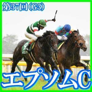 【エプソムカップ(G3)】(2020日刊馬番コンピ指数分析篇)