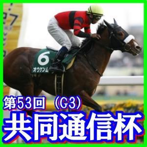 【共同通信杯(G3)】(2019日刊馬番コンピ活用術予想篇)
