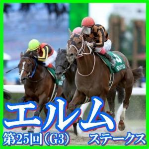 【エルムステークス(G3)】(2020日刊馬番コンピ指数分析篇)