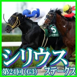 【シリウスステークス(G3)】(2020ラップ分析篇)
