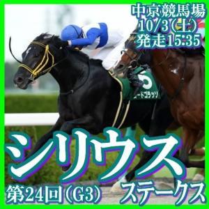 【シリウスステークス(G3)】(2020総合分析予想篇)