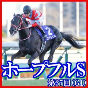 【ホープフルS(G1)】(2020日刊馬番コンピ指数分析篇)