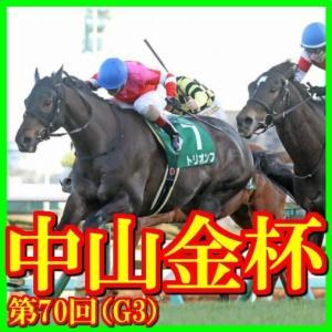 【中山金杯(G3)】(2021日刊馬番コンピ指数分析篇)