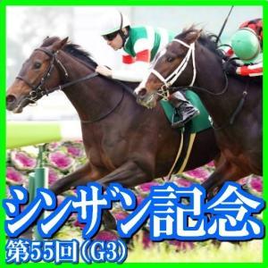 【シンザン記念(G3)】(2021日刊馬番コンピ指数分析篇)