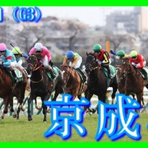 【京成杯(G3)】(2021血統データ分析篇)