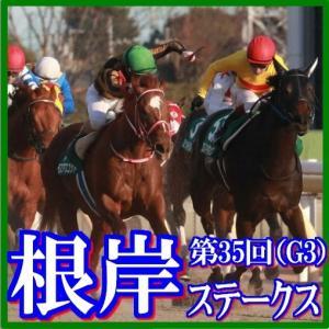 【根岸ステークス(G3)】(2021日刊馬番コンピ指数分析篇)