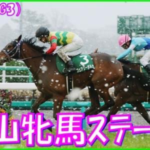 【中山牝馬S(G3)】(2021血統データ分析篇)