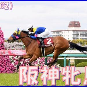 【阪神牝馬S(G2)】(2021血統データ分析篇)