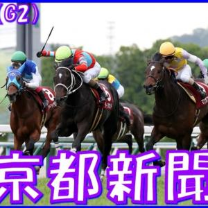 【京都新聞杯(G2)】(2021血統データ分析篇)