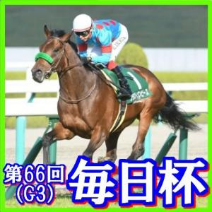 【毎日杯(G3)】(2019日刊馬番コンピ活用術予想篇)