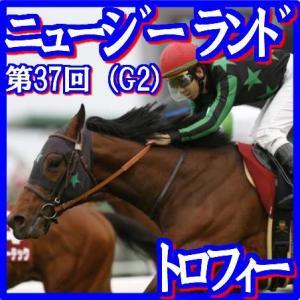 【ニュージーランドT(G2)】(2019日刊馬番コンピ活用術予想篇)