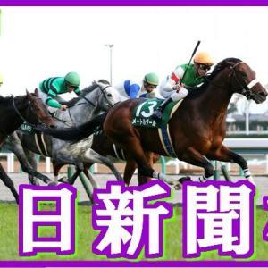 【中日新聞杯(G3)】(2018TARGET frontier JV活用術予想篇)