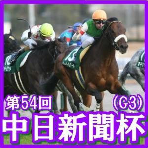 【中日新聞杯(G3)】(2018日刊馬番コンピ活用術予想篇)