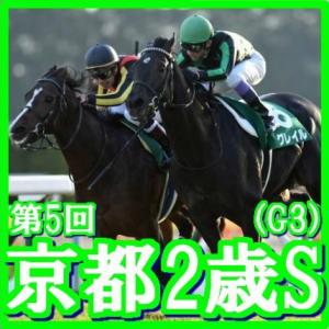 【ラジオNIKKEI杯京都2歳S(G3)】(2018日刊馬番コンピ活用術予想篇)