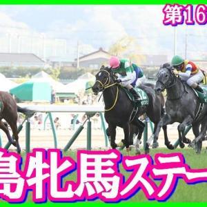 【福島牝馬S(G3)】(2019血統データ活用術予想篇)