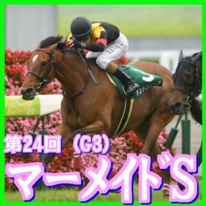 【マーメイドS(G3)】(2019日刊馬番コンピ活用術予想篇)