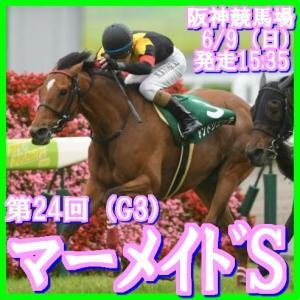 【マーメイドS(G3)】(2019ハイブリッド指数活用術予想篇)
