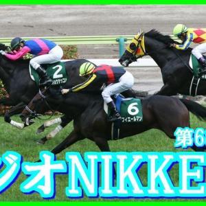 【ラジオNIKKEI賞(G3)】(2019血統データ活用術予想篇)