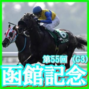 【函館記念(G3)】(2019日刊馬番コンピ活用術予想篇)