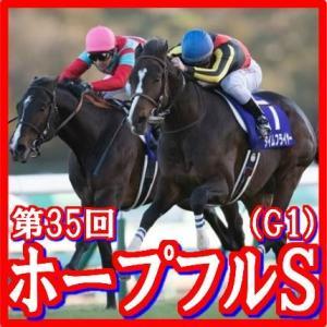 【ホープフルステークス(G1)】(2018日刊馬番コンピ活用術予想篇)